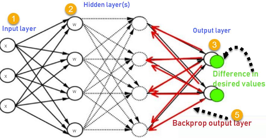 How Backpropagation Algorithm Works