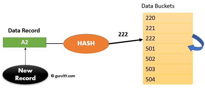 Hashing in DBMS: Static & Dynamic with Examples