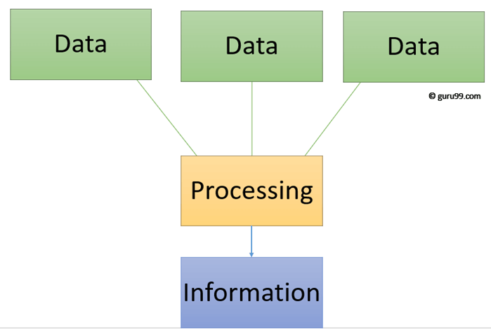 difference between data and information quora