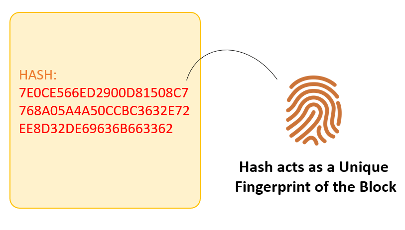 What is SHA256 Hash