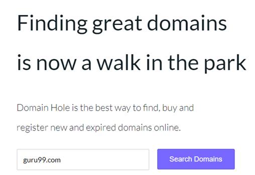 Top 22 Best Domain Name Generators in 2019