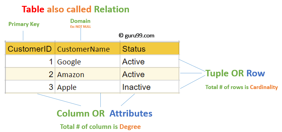 Relational Data Model in DBMS: Concepts, Constraints, Example