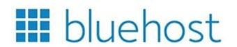 Best Web Hosting in INDIA 2021 - ShopEverything Bluehost