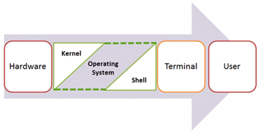 Components of Shell Program