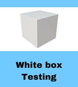 WhiteBox Testing