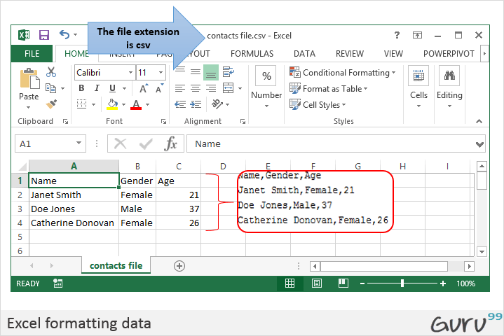 CSV vs Excel ( xls) - What's the Difference?