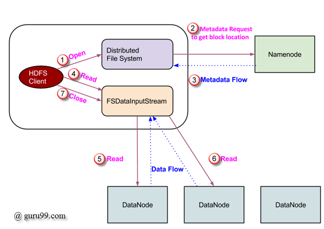 HDFS Tutorial: Architecture, Read & Write Operation using