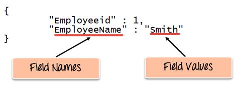 MongoDB Create & Insert Database