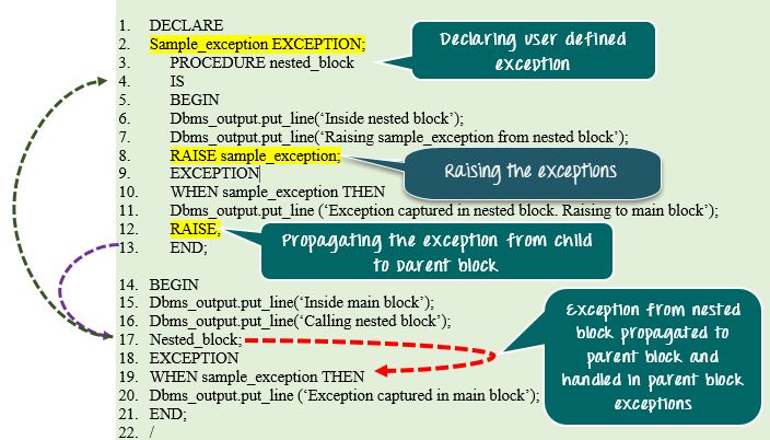 oracle pl sql exception handling examples to raise user defined