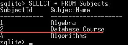 SQLite INSERT, UPDATE, DELETE Query with Example