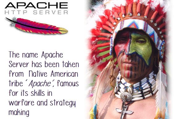 Apache Tutorials for Beginners