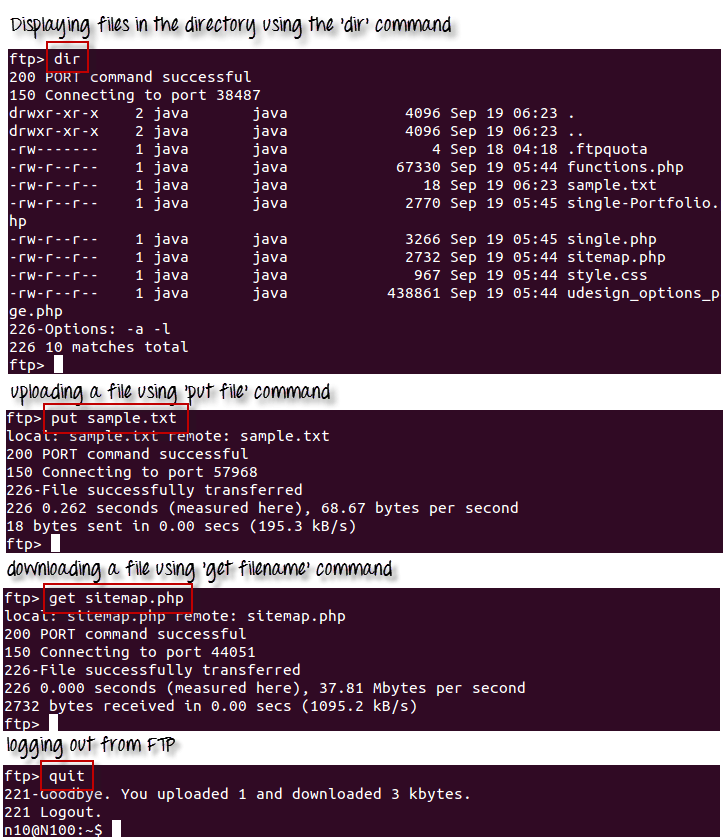 Linux/Unix SSH, Ping, FTP, Telnet Communication Commands