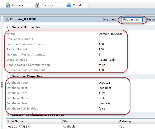 Properties of Domain in Informatica