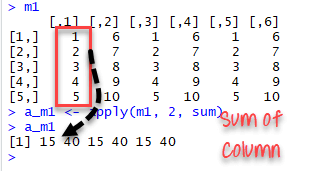 apply() function example in R