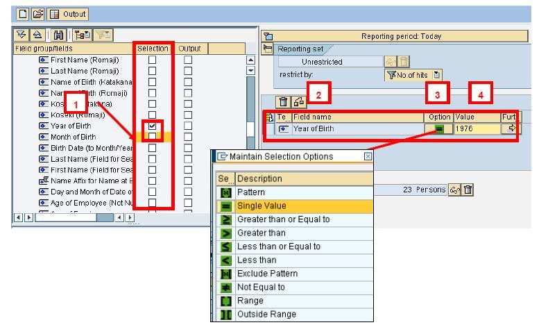 SAP AD HOC Query Tutorial (S_PH0_48000513)