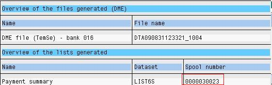 Bank Transfer using SAP DME File