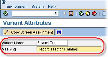 How to Create a Variant in SAP