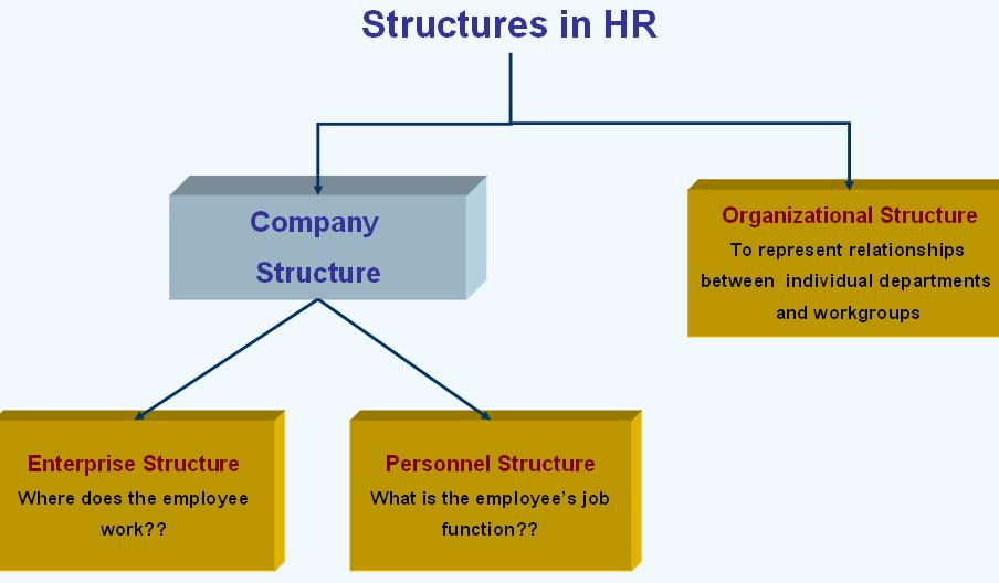What is structures in SAP? Different types of structures