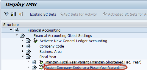 Create  Fiscal Year Variant & Assign to Company Code in SAP: Complete Tutorial