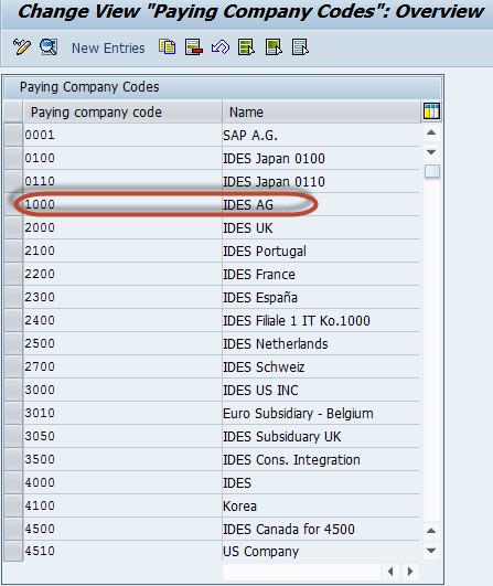 Automatic Payment Program Run F110: SAP Tutorial