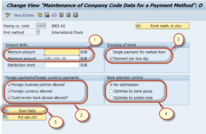 Automatic Payment Program Run F110: SAP Tutorial