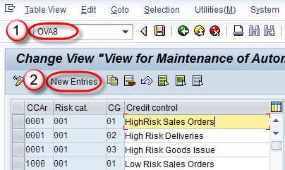 SAP Credit Management Tutorial: OVA8